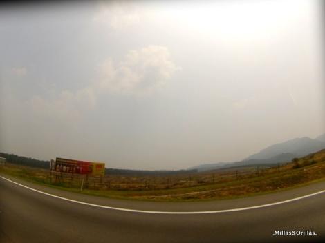 .Milläs&Orilläs. Area destruida para plantacion de palma, en las carreteras de Malaysia.