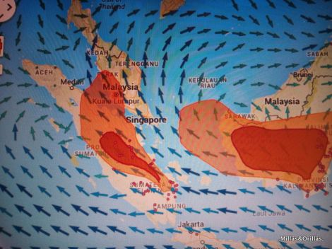 .Milläs&Orilläs. Corrientes de aire, llevando el humo de los incendios de Indonesia a Malaysia.